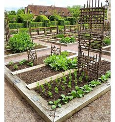Potager garden 164311086383150427 - Still talking about potagers. This is the potager at the Priory d' Orsan also in the Loire Valley. I know this garden very well and is a 'must visit' when visiting France Source by diggingwithDana Potager Garden, Veg Garden, Vegetable Garden Design, Edible Garden, Vegetable Gardening, Garden Soil, Micro Garden, Fairy Gardening, Garden Bar