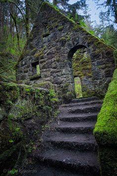 Witches Castle. Forest Park, Portland, Oregon.