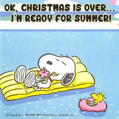 Peanuts christmas quotes hilarious holiday cards Ready For Summer Snoopy Love, Snoopy E Woodstock, Snoopy The Dog, Charlie Brown Und Snoopy, Charlie Brown Quotes, Snoopy Hug, Snoopy Images, Snoopy Pictures, Snoopy Comics