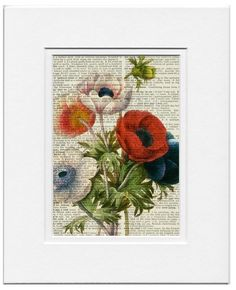 vintage anemone artwork  printed on old page from by FauxKiss, $12.00