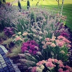 "56 Likes, 6 Comments - Susan Schlenger Landscapes (@landscapedesigns) on Instagram: ""Stylish.plSuch a beautifully soft perennial garden. #landscapedesigner #plants #frontyards…"""