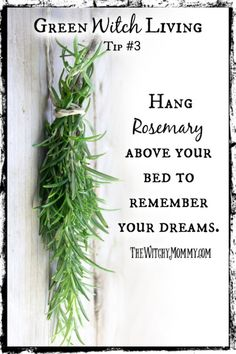 Green Witch Living Tips: Hang rosemary above your bed to remember your dreams. Green Witchcraft, Wiccan Witch, Wiccan Spells, Magic Spells, Witchcraft Herbs, Magick Book, Magic Herbs, Herbal Magic, Witch Herbs
