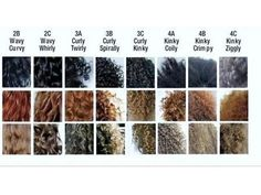 Hair types chart.  I going to keep pinning these until I figure out my hair type. lol