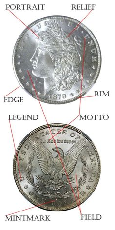 Anatomy of a Coin - Old Coin Collecting