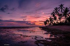 https://flic.kr/p/C7WQvi   Glorious sunset  on Praia do Forte - Bahia