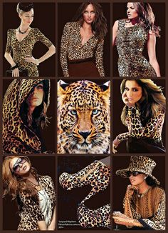 'Leopard' poster 2014. Wearers of faux animal-print clothing are hopefully mindful that leopard numbers are sadly declining due to habitat loss & hunting.