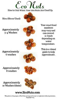 SOAP NUTS/BERRIES. How to tell When Eco Nuts are used up.