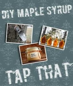 DIY Maple Syrup? We'd tap that! http://www.punkdomestics.com/content/diy-maple-syrup-wed-tap
