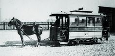 Train, Horses, Vehicles, Animals, Twitter, Animales, Animaux, Zug, Rolling Stock