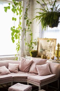 Plants + Pink Couch.                             -- Found on http://wonderpiel.com/pages/10-most-remarkable-beauty-tips-ever