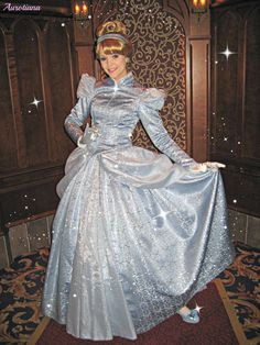 Disney Princesses And Princes, Princess Collection, Disney Dresses, Poodle, Cinderella, Gown, Friday, Butterfly, Costumes