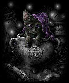 Pagan. Wicca. Wiccan. Black Cat