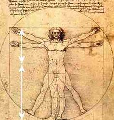 "Leonardo da Vinci's ""Vitruvian Man"",   showing the golden ratio in body dimensions"