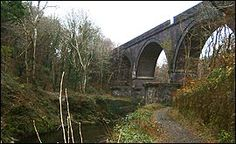 The viaduct and river in Plymbridge Woods