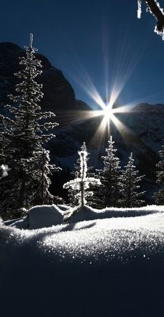 Snow and Light...beautiful