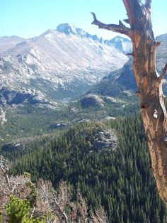 Rocky Mountain National Park Estes Park, CO Visit Colorado, State Of Colorado, Colorado Homes, Colorado Rockies, Beautiful Photos Of Nature, Nature Photos, Beautiful Places, Great Places, Places To Visit