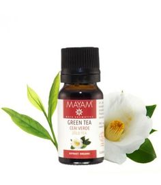 Organic Green Tea Extract 10 ml - active anti-aging, maintain skin elasticity Organic Green Tea, Green Tea Extract, Skin Elasticity, Candle Jars, Anti Aging, Recipes, Ebay, Fashion, Green
