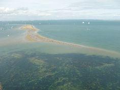 Alors que le projet de parc naturel marin de l'Estuaire de la Gironde et des Pertuis charentais est au point mort depuis des mois, l'intervention du député socialiste Philippe Plisson pourrait relancer la machine - Photo RA