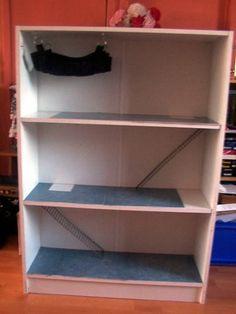 Rat Cage in a bookshelf