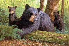 Bearly Keeping Up