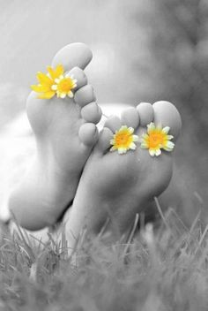 touch of yellow flower center toes. black and withe photography