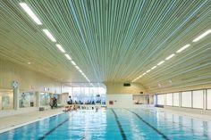 'De Heuvelrand' Voorthuizen Swimming Pool / Slangen+Koenis Architecten