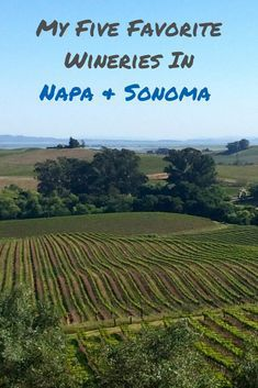 Five of the best wineries in the Napa and Sonoma California wine countries. Inspiration to start planning your trip. Northern California Travel, Sonoma California, California Wine, Hunter Valley Winery, Napa Valley Wine, Best Wineries In Napa, Napa Winery, Margaret River Wineries, Best Wine Clubs