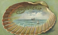 Lovely Souvenir Vintage Travel Postcard With an Ocean Scene . Vintage Poster, Vintage Artwork, Vintage Tags, Vintage Postcards, Beach Souvenirs, Vintage Nautical, Nautical Theme, Ocean Scenes, Vintage Florida