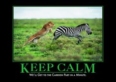 Keep Calm and carrion (groan) from Despair, Inc. Witty Quotes, Quotable Quotes, Inspirational Quotes, Demotivational Posters, Haha Funny, Funny Stuff, Funny Things, Hilarious, Dancing In The Rain