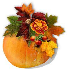 Cute Clipart, Pumpkin, Clip Art, Buttercup Squash, Pumpkins, Squash