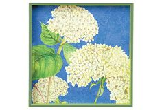"15"" Square Tray, White Hydrangea on OneKingsLane.com fun and cheery tray $42/75 by Linda Funk for Rockflowerpaper"