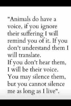 Be the voice if the animals Stand up and speak up for their right