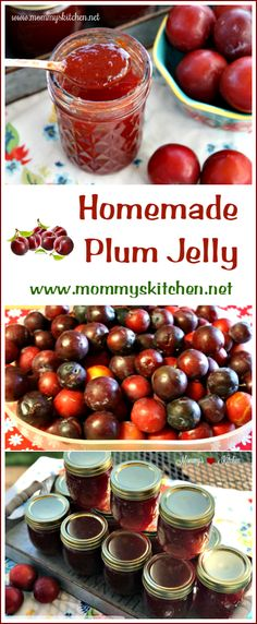 Do It Yourself Solar Electricity For Your House Mommy's Kitchen - Recipes From My Texas Kitchen: Fresh Plums, Sugar, Pectin, Water And Butter Make Up This Delicious Old Fashioned Plum Jelly. Plum Jelly Recipes, Fruit Recipes, Milk Recipes, Egg Recipes, Recipes Dinner, Pasta Recipes, Bread Recipes, Cake Recipes, Breakfast Recipes