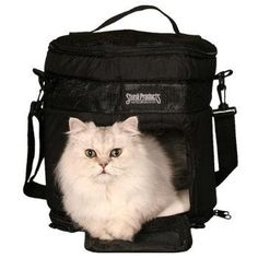SturdiTote Cylindrical Pet Carrier - 12' Wide, 13' High *** More info could be found at the image url.