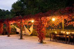 Outdoors- italian inspired decor | Italian style garden pergolas