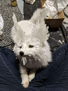 """Some work in progress of my take on the """"Vulptex"""" from Star Wars: The Last Jedi Arctic fox softmount plush with cast crystalline ears and real quartz spires all throughout! Toy Art, Tableau Star Wars, Han And Leia, Star Wars Droids, Cinema, Funny Cats And Dogs, Star War 3, Fantasy Movies, Last Jedi"""