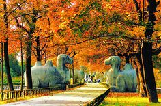 Nanjing, China: The Divine Trail, built in the Ming Dynasty, is a scenic road lined with lithic animals on both sides on the city's eastern suburb. Places To Travel, Places To Visit, Nanjing, China Travel, Travel Memories, Historical Sites, So Little Time, Shanghai, Great Places
