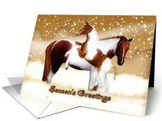 Christmas Card -Season's Greetings - Horses, Foal & Mare card (710792)