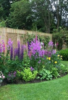 Any tall flowers in beautiful colours are a beautiful element to camoflage a very ordinary fence. Depending on the flower you may even attract butterflies and bees, creating an enviro friendly living garden. #gardenfence