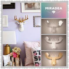 Átlátszó rénszarvas trófea | Miradea