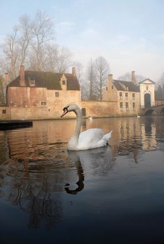 Tranquility on a canal in Bruges, Belgium. Bruges, the capital of West Flanders in northwest Belgium, is known for its canals, cobbled streets and medieval buildings. The Places Youll Go, Places To See, Wonderful Places, Beautiful Places, Beautiful Buildings, Art Quotidien, Adventure Travel, Places To Travel, Scenery