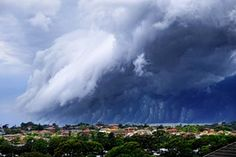"A shelf cloud forming over Sydney, Australia, on November 6, 2015. The poster on Twitter described it as a ""cloud-tsunami""."