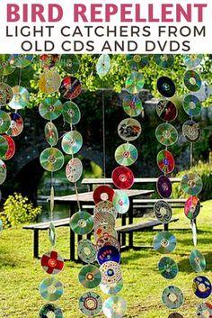 Diy Garden Fence, Garden Web, Garden Crafts, Balcony Garden, Garden Kids, Recycled Cds, Recycled Garden, Keep Birds Away, Egg Shells In Garden