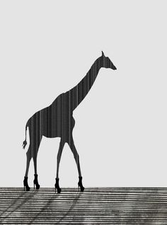 ARTFINDER: Giraffe by Rennie Pilgrem - Limited Edition of 75. Printed on Somerset Photo 300gsm 100% cotton paper. Fine Art Trade Guild approved. An adult Giraffe can grow to nearly 6 metres (16-1...