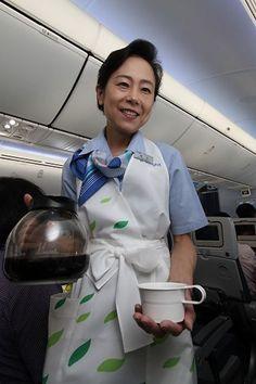 Ana tranny flight attendant