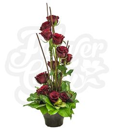 Justify My Love   FlowerChix Justify your love with this contemporary style of a dozen rich red premium roses.  You can thank us later!