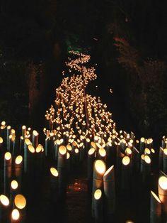 『廣瀬神社』大分県 竹田町 「たけた竹灯籠 竹楽」Chikuraku: Taketa, Oita, Japan