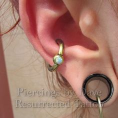 Conch, fresh to death with anatometal 10g captive with white opal bead! More of these!