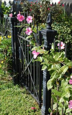 Victorian iron fence.... loooooove the fence!!!!