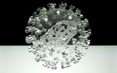 HIVにマラリア、インフルエンザ。病原菌やウィルスをガラスで再現した美しいオブジェ作品 | ARTIST DATABASE
